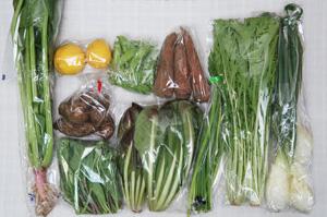 4月16日の無施肥無農薬栽培と自然栽培の定期宅配Mセット/里芋、ニンジン、葉玉ねぎ、ニンニクの芽、絹さや、チコリー、水菜、サラダほうれん草、のらぼう菜、レモン