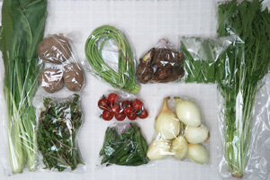 5月7日の無施肥無農薬栽培と自然栽培の野菜の定期宅配セット