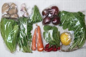 6月8日の無施肥無農薬栽培と自然栽培の定期宅配Mセット/赤玉ねぎ、ジャガイモ(インカのめざめ)、ニンジン、インゲン、ロメインレタス、大根葉(中抜き葉)、ラディッシュ、ルッコラ、レモン、ニンニク