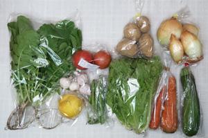 6月11日の無施肥無農薬栽培と自然栽培の野菜の定期宅配セット