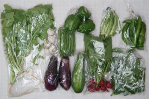 7月27日の無施肥無農薬栽培と自然栽培の野菜の定期宅配セット