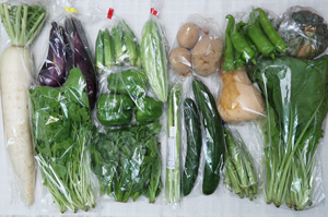8月3日の無施肥無農薬栽培と自然栽培の定期宅配Lセット/大根、小菊南瓜、ジャガイモ(西豊)、ゴーヤ、キュウリ、茄子、グリーンパプリカ、万願寺とうがらし、オクラ、オクラ、アスパラ、小松菜、ルッコラ、ツルムラサキ、バターナッツカボチャ
