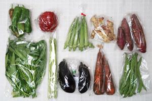 9月3日の無施肥無農薬栽培と自然栽培の定期宅配Mセット/サツマイモ、ニンジン、茄子、パプリカ、甘唐辛子、平サヤインゲン、オクラ、アスパラ、エンサイ(空心菜)、新生姜