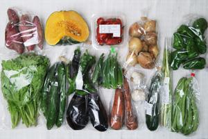 9月7日の無施肥無農薬栽培と自然栽培の定期宅配Lセット/恋するマロン南瓜、サツマイモ、ニンジン、玉ねぎ、キュウリ、ズッキーニ、茄子、ピーマン、万願寺とうがらし、オクラ、平サヤインゲン、アスパラ、わさび菜、ニンニク、ミニトマト
