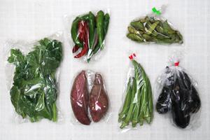 9月10日の無施肥無農薬栽培と自然栽培の定期宅配Sセット/サツマイモ、茄子、万願寺とうがらし、枝豆、オクラ、ツルムラサキ