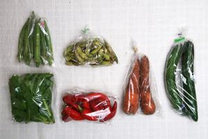 9月17日の無施肥無農薬栽培と自然栽培の定期宅配Sセット/ニンジン、キュウリ、鷹ヶ峰とうがらし、枝豆、オクラ、ツルムラサキ