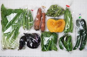 10月15日の無施肥無農薬栽培と自然栽培の野菜の定期宅配セット