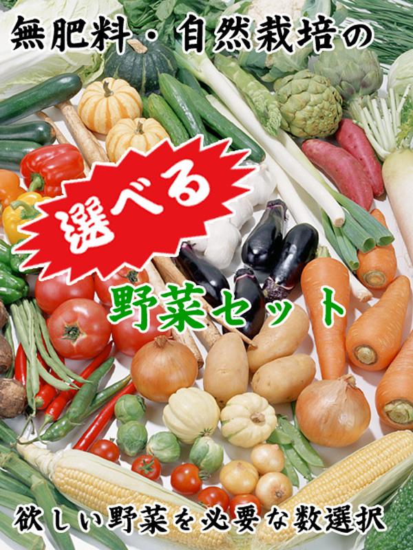 無肥料・自然栽培の選べる野菜セット