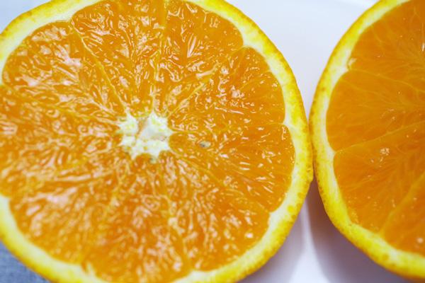 無肥料・自然栽培の清美オレンジ