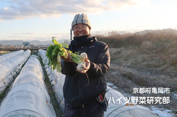 ハイツ野菜研究部