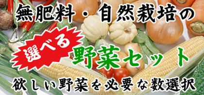 無肥料・自然栽培選べる野菜セット