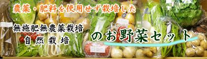 無肥料の旬のお野菜や果物をお届け定期宅配セット