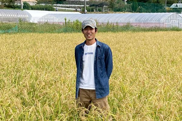 無肥料・自然栽培の農園neguのコシヒカリ