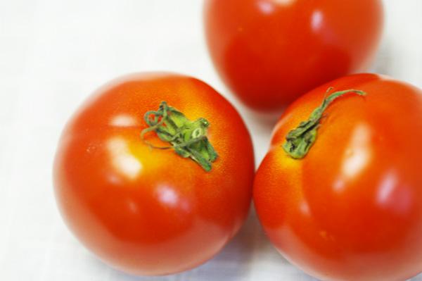無肥料・自然栽培トマト
