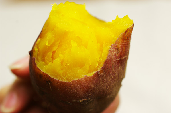 無肥料・自然栽培サツマイモ(安納芋)