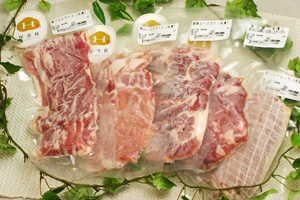 保美豚冷凍生肉5品セット