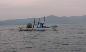 しらす漁へいざ出港