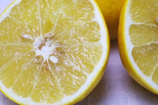 無肥料・自然栽培グレープフルーツ