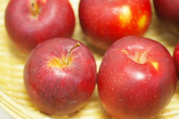 無肥料・無除草剤・減農薬リンゴ(紅玉)
