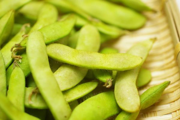 無肥料・自然栽培枝豆