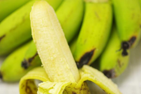 無肥料・自然栽培ミニバナナ